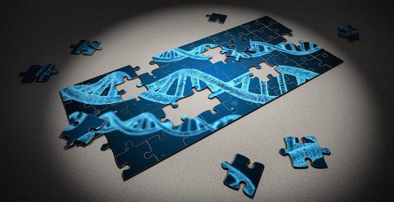 Nouvelles technologies : les apports de l'impression 3D dans la médecine